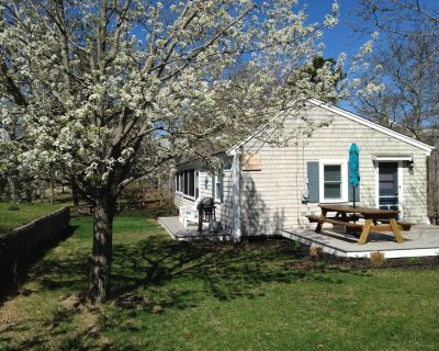 Steps to Cooks Brook Beach! A/C, Heat, Wifi, Outdoor Shower, Gas Grill - North Eastham