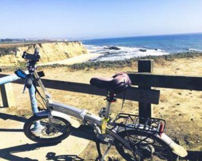 OYAMA CX E8D Folding Electric Bike-VERY GOOD CONDITION