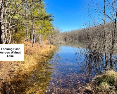 3.13 Acres for Sale in Annapolis, MO