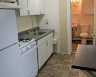 105 Phillip Street 2 #2, Albany, NY 12202 1 Bedroom Apartment