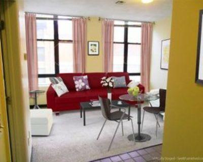 84 Essex St #82, Boston, MA 02111 2 Bedroom Apartment