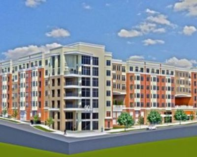 905 Kenilworth Ave #26188-0, Charlotte, NC 28204 Studio Apartment