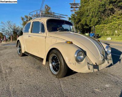 REDUCED 1969 Volkswagen Beetle - Patina Queen