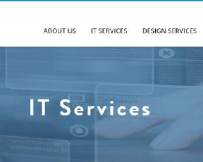 Web Hosting Services in orlando, Florida | Newtek IT Services