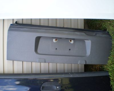 RARE 2003-2007 Honda Element Tail Gate Tailgate Rear Plastic Hatch 03-07 WITH HINGES