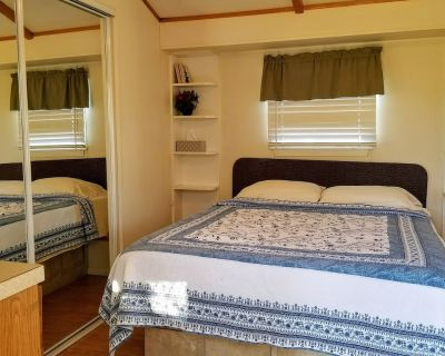 Cozy Cottage in the City Limits - South Arlington