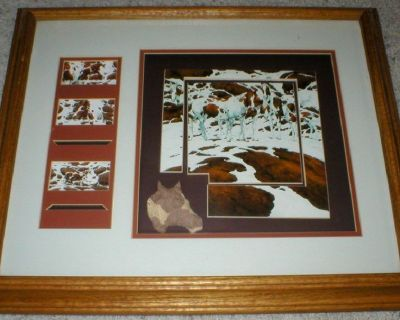 """Bev Doolittle """"Pintos"""" Art Print Collage Framed & Matted in Shadow Box"""