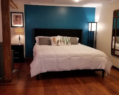 King-sized Bed and Infrared Sauna - Asheville
