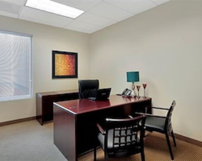 Private Office for 3 at Premier Executive Center