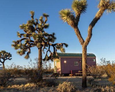 The Gypsy Wagon, Yucca Valley, CA