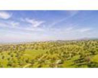 Unique Property On 86 Acres - RealBiz360 Virtual Tour