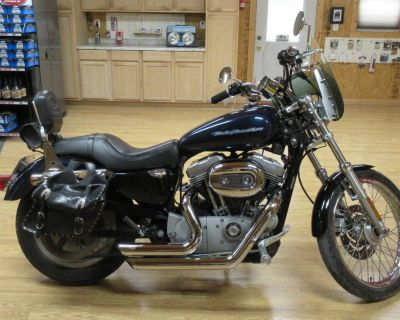 2004 Harley Davidson XL883 Custom