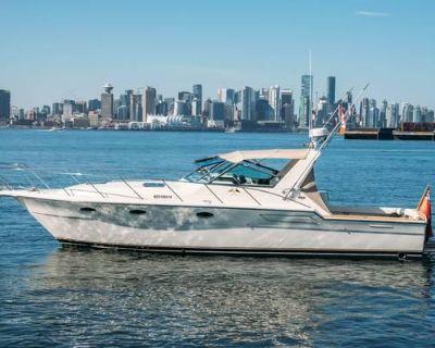1987 Tiara Yachts 3600 Open