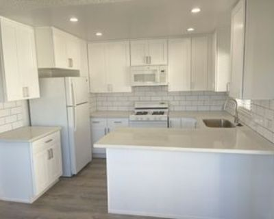 1045 S Alma St #5, Los Angeles, CA 90731 2 Bedroom Apartment