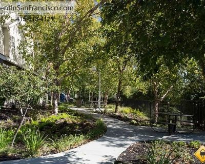 Apartment for Rent in Campbell, California, Ref# 2439784