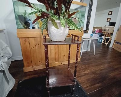 Small Indoor plant stand (plant not included)
