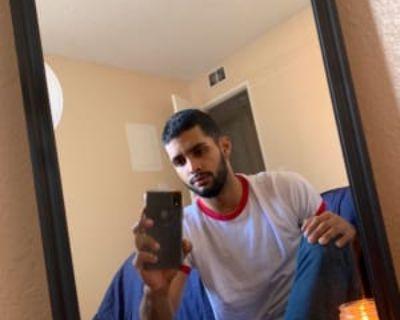 Seth, 21 years, Male - Looking in: Los Angeles Los Angeles County CA