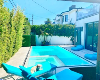 Beautiful Backyard with Pool, Hot Tub, Grill, T.V., Bar, and Six Person Dining Table, Los Angeles, CA