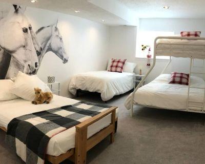 NEW Bright & Sunny Comfort - Urban Farm Living! - Briargate