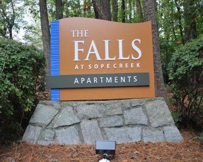 The Falls at Sope Creek