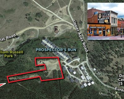 Platted Townhome Lots in Prospector's Run
