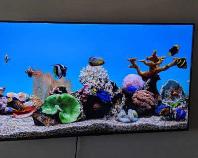 "LG 75"" Nano Cell TV"