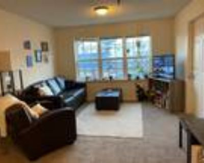 Varsity House $350 Per Month First and Last Month Free Private Bedroom and