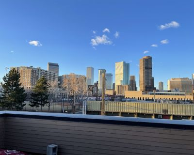 New Modern Townhome with HUGE roofdeck in RiNo - Curtis Park
