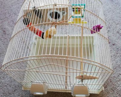 Bird Cage with breeding box, food and more!