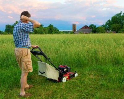 Lawn Care Carmel