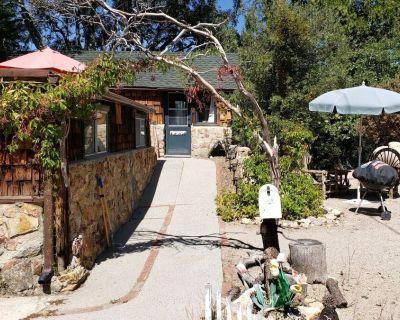 My Deer Studio Cottage - Idyllwild