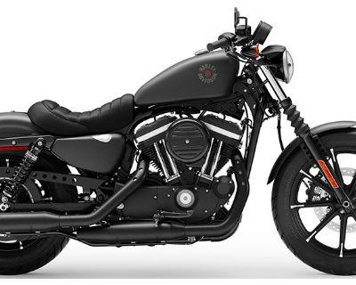 2019 Harley-Davidson Iron 883 Sportster Houston, TX