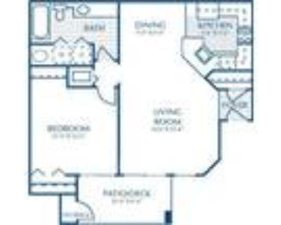 2200 Big Creek Apartments - Dogwood