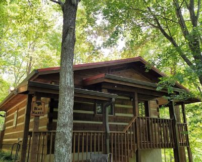 Honeymoon Cabin, Very Secluded, Very Romantic, Arcade, Close to Town, HOT TUB!! - Gatlinburg