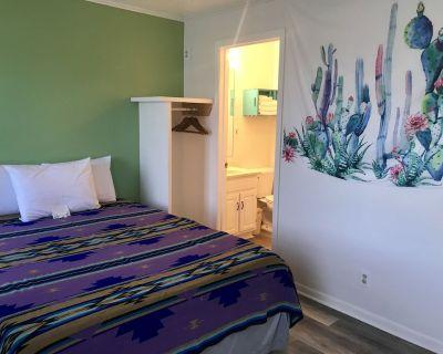Cactus Queen at Hotel Kitsmiller on Main - Fredericksburg