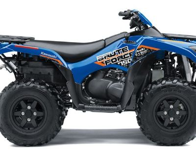 2019 Kawasaki Brute Force 750 4x4i EPS ATV Sport Utility Norfolk, VA
