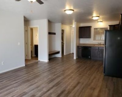 404 North Sioux Boulevard - 3 #3, Brandon, SD 57005 2 Bedroom Apartment