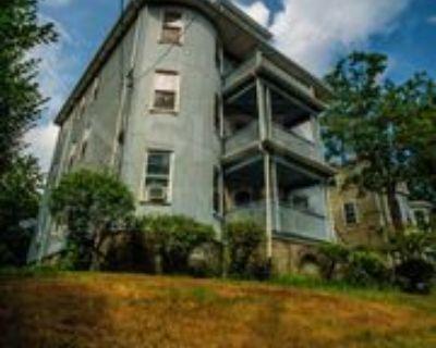 46 Spring Park Ave #1, Boston, MA 02130 3 Bedroom Apartment