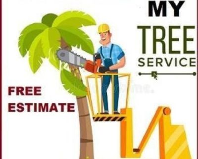 Tree Service - Local Tree Removal - Request A Quote https://www.mytreeman.com Tree Service