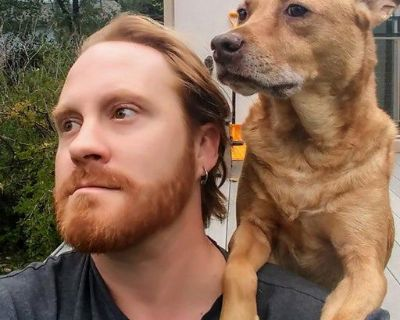 Cat friendly dog dad need new digs