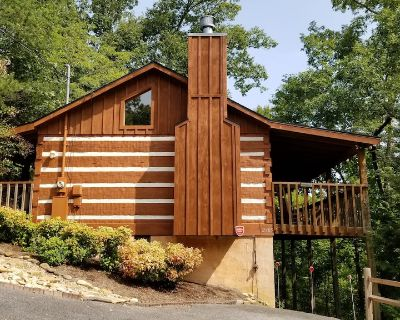Leroy's Quiet and Cozy Cabin - Pigeon Forge