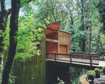 Wald House PDX - Featured on Dwell in West Hills forests of Portland - Portland Heights
