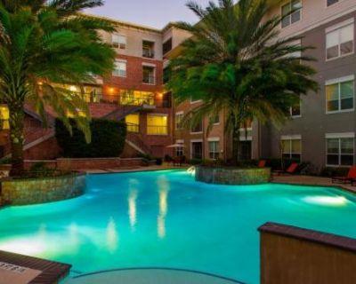 8333 Braesmain Dr Houston, TX 77054 1 Bedroom Apartment Rental