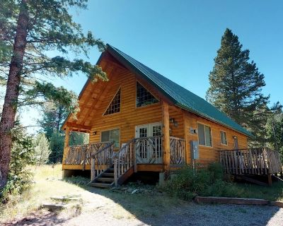 KD HAVEN CABIN SATELLITE TV 20MIN TO YELLOWSTONE BBQ GRILL QUIET WOODED LOT - Island Park