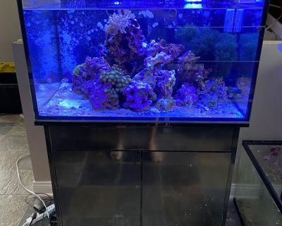 Innovative Marine 50g lagoon