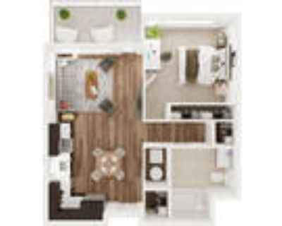 The Hive at 9Seventy - 1 Bedroom - C