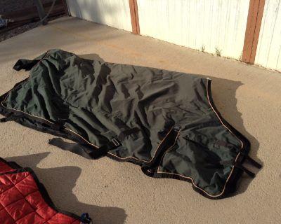 WEAVER-Horse Blanket