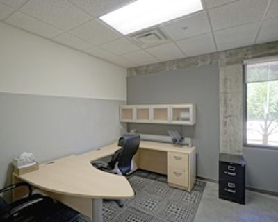 Private Office for 1 at Treeline Realty