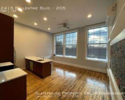 2415 Ballentine Blvd #205, Norfolk, VA 23509 Studio Apartment