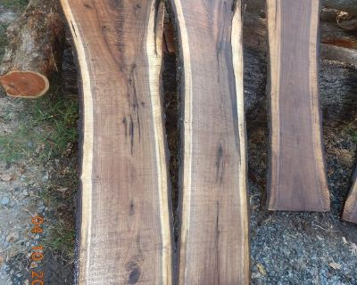 Live edge walnut crotch slabs